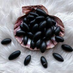 Černá Shiva lingams